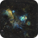 NGC 2020 & consorts,                                Los_Calvos