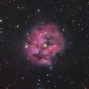 Cocoon Nebula (LRGB),                                Trevor Jones