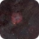 IC 1396  (Elephant Trunk),                                Andrea Bingener