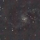 M 33 Triangulum Galaxy,                                Giuseppe Nicosia