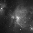 M42 luminace,                                guillau012