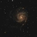 Widefield M101,                                pdlumb