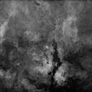 Butterfly Nebula and Sadr region of Cygnus in Ha light,                                AstroKitty