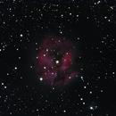 Cocoon Nebula,                                HUGO S GARNICA