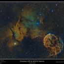 Sharpless 249 & Jellyfish Nebula,                                rflinn68