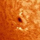 Solar Sun Spot,                                Jim Matzger