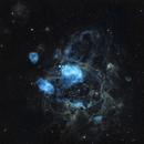 NGC 1763 - the Bean Nebula in LMC,                                Jan Scheers