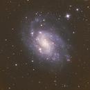 NGC 300,                                Anne-Maree McComb