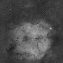 Elephant Trunk Nebula,                                Callum Mitchell