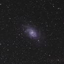 M33,                                Nipa78