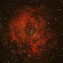 La Nébuleuse de la Rosette,                                Nicolas Aguilar (Actarus09)