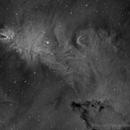 NGC 2264 Cone Nebula HA - New processing workflow,                                Paddy Gilliland