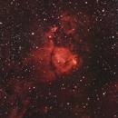 The Fish Head Nebula,                                Lee Harris