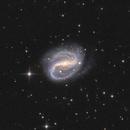NGC7479,                                tommy_nawratil