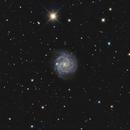 NGC 3184,                                jelisa