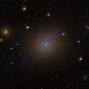 NGC 1275,                                Steven Marx