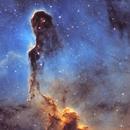 Elephant's Trunk Nebula,                                Amir Salehi