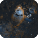 Fishead nebula, IC1795,                                Rolandas_S