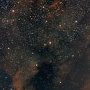 NGC 7000,                                Eric Watson