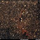 IC 1396: Elephant Trunk Nebula,                                Alexis Tibaldi