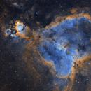 NGC 896 - Heart Nebula,                                Wyvern
