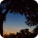 Jupiter and Venus Conjunction,                                Richard S. Wright...