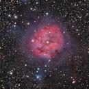 Cocoon Nebula LRGB,                                1074j