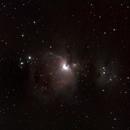 Orion Nebula,                                David Moulton