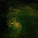 IC405 - Flaming Star Nebula,                                Doug Gray