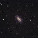 NGC 4725 and friends,                                Carlos Casaldeiro