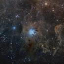 Iris nebula (Ngc 7023) Poss II DSS,                                Gianluca Belgrado
