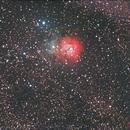 Messier 20,                                Anton