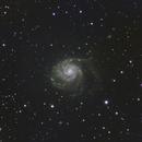 M101,                                Sean Boon