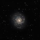 M74 - The Phantom Galaxy,                                Timothy Martin & Nic Patridge