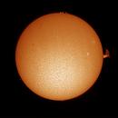 Full Solar Disk 30-Mar 2021,                                Thomas