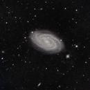 M 109  Galaxie spirale,                                Roger Bertuli