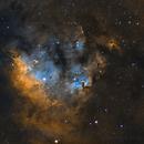 NGC7822,                                Peter Jenkins