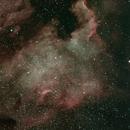 North American Nebula,                                FrankMagoo