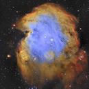 Monkey Head Nebula (NGC 2174) SHO,                                Kobrastro