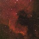NGC-7000 The North American Nebula,                                Bert Seltzer