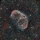 Crescent Nebula NGC 6888,                                Elliott Melan