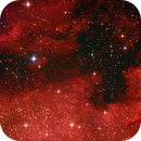 "NGC 7000 + IC 5070 + ""Kleiner Orion"" (Leiter 9),                                norbertbuchta"