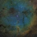 IC 1396,                                Aaron Hakala