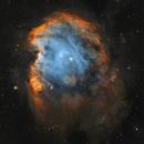 NGC 2174 - Monkey Head Nebula,                                Wissam Ayoub