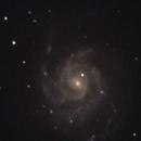M101,                                Brian Ritchie