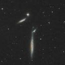 NGC2805, 2814,2820,                                Alessandro Bianconi