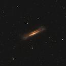 NGC3628 Hamburger Galaxy,                                Stan Smith