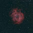 Rosette Nebula,                                gmartin02