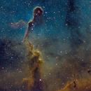 IC1396 - Elephant Trunk Nebula LSHO,                                marsbymars