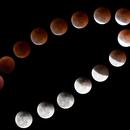 Moon eclipse 2018,                                Dominik Ball
